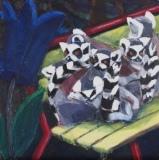 Lemurerna i Junsele.